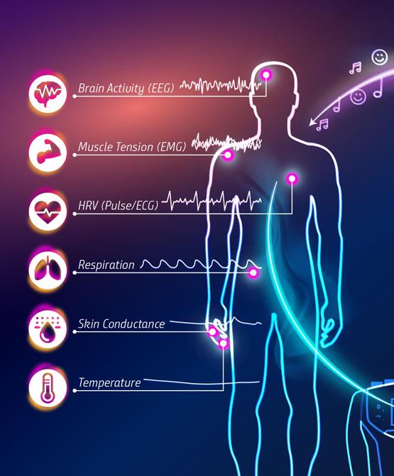 Sistema neurofeedback